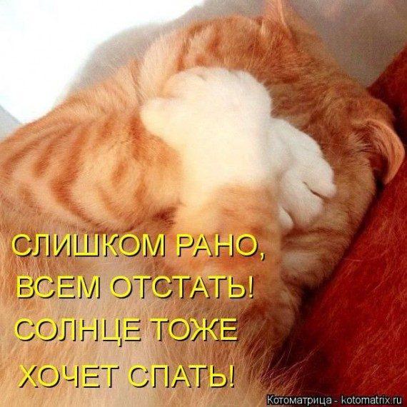 http://image2.thematicnews.com/uploads/images/00/00/39/2014/05/30/e5afa43e33.jpg