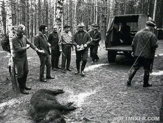 лист инструктажа на охоте образец