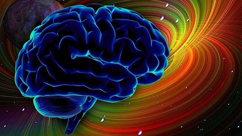 Что нужно есть на завтрак для лучшей работы мозга    Будьте здоровы 85af2ab07cd