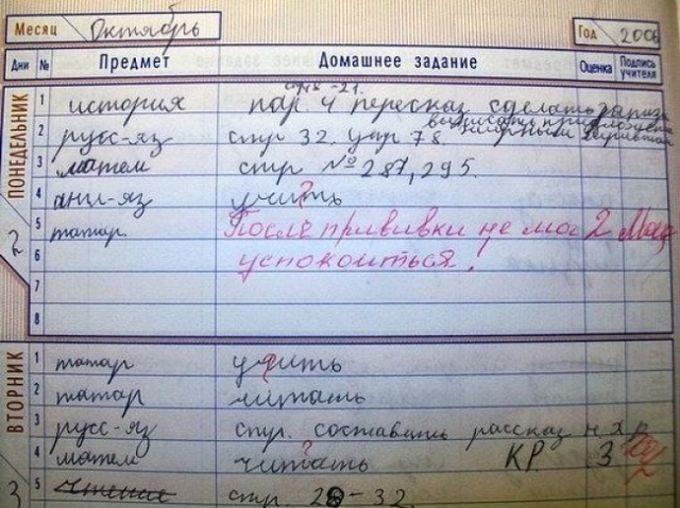 Весёлые записи в школьных тетрадках и дневниках