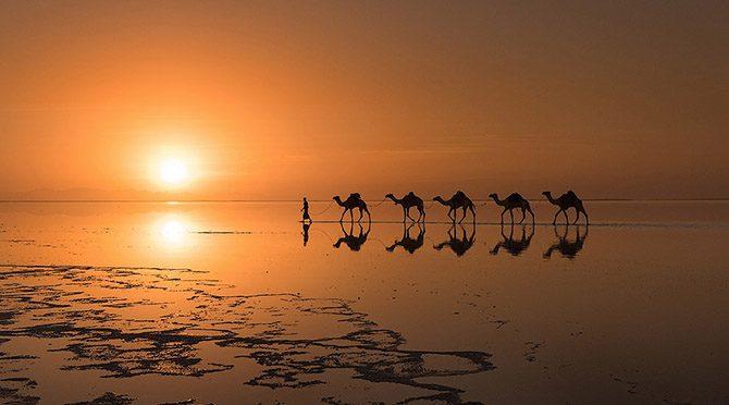 Лучшие фотографии апреля 2015 от National Geographic