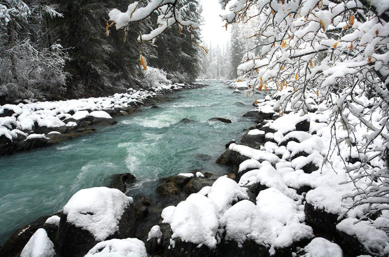 http://image2.thematicnews.com/uploads/images/68/22/63/92017/12/18/f4fb2e6207.jpg