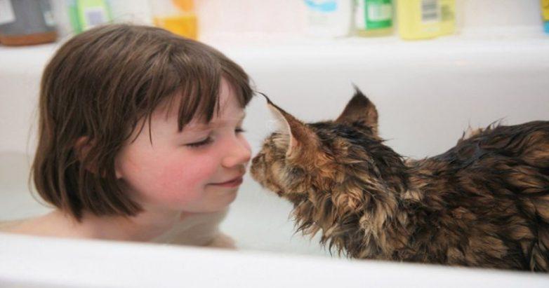 0657599b07 Кошка, которая помогла больной аутизмом девочке
