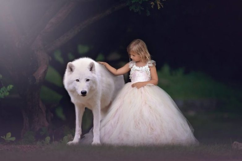 http://image2.thematicnews.com/uploads/images/68/22/64/02017/01/05/7a97e560de.jpg