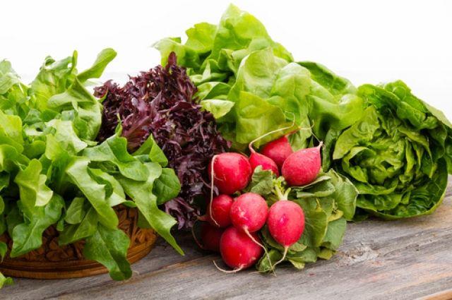 Салат из свежей зелени польза