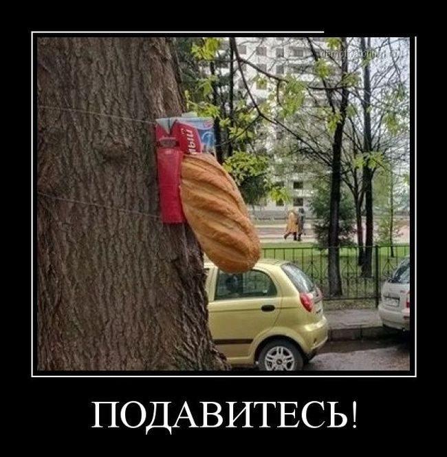 этом демотиваторы смешные свежие по русский шапку своими