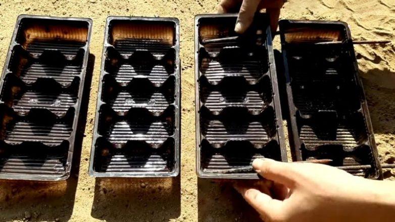 Интересное использование пластиковой упаковки от сладостей