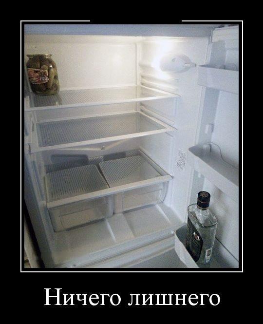 хозяйки всегда пустой холодильник демотиваторы есть горизонт слева