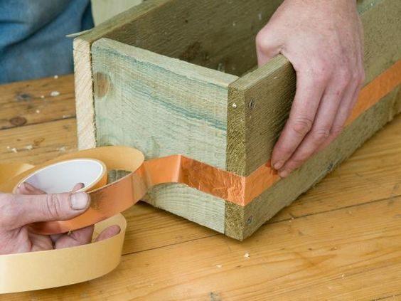 Как защитить растения от улиток