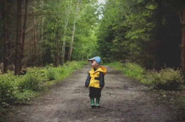 3-хлетний малыш заблудился и трое суток выживал в лесу