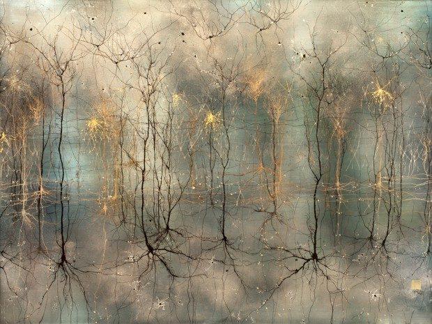 Человеческий мозг: красота внутри
