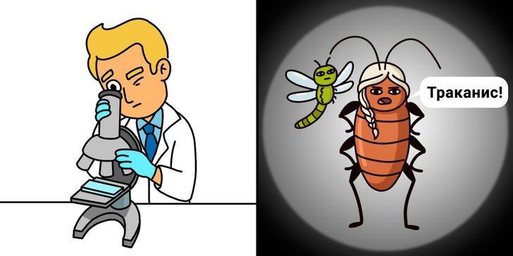 8 забавных комиксов на разные научные темы