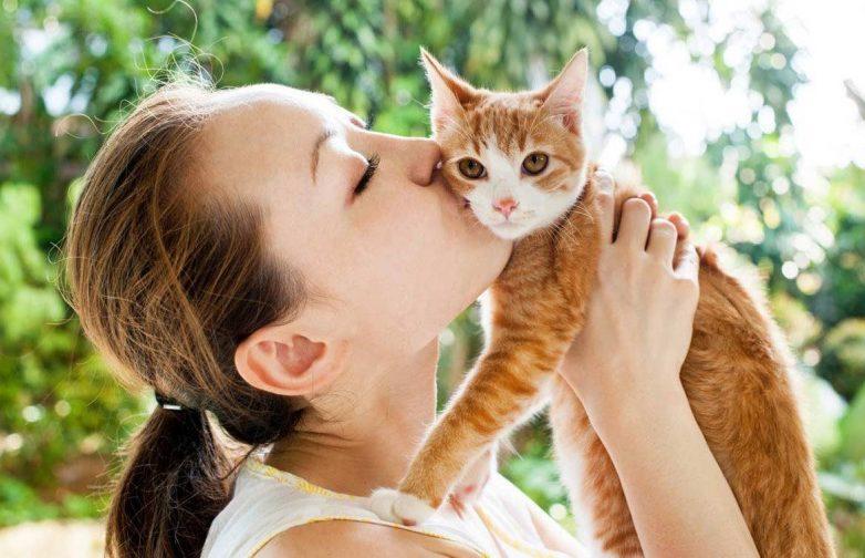Почему мы все немного котики: в геноме людей и кошек обнаружили сходства