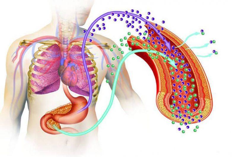 Как распознать и остановить преддиабет