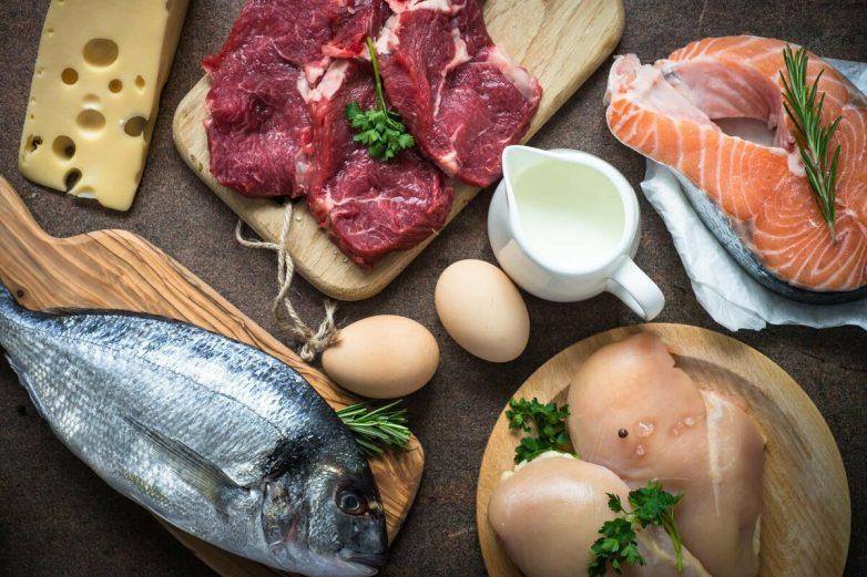 Продукты с самым высоким содержанием белка