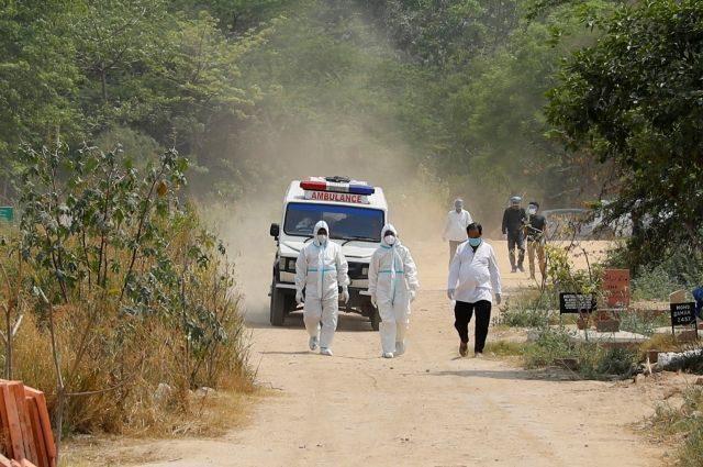 Индийский штамм коронавируса устойчив к антителам