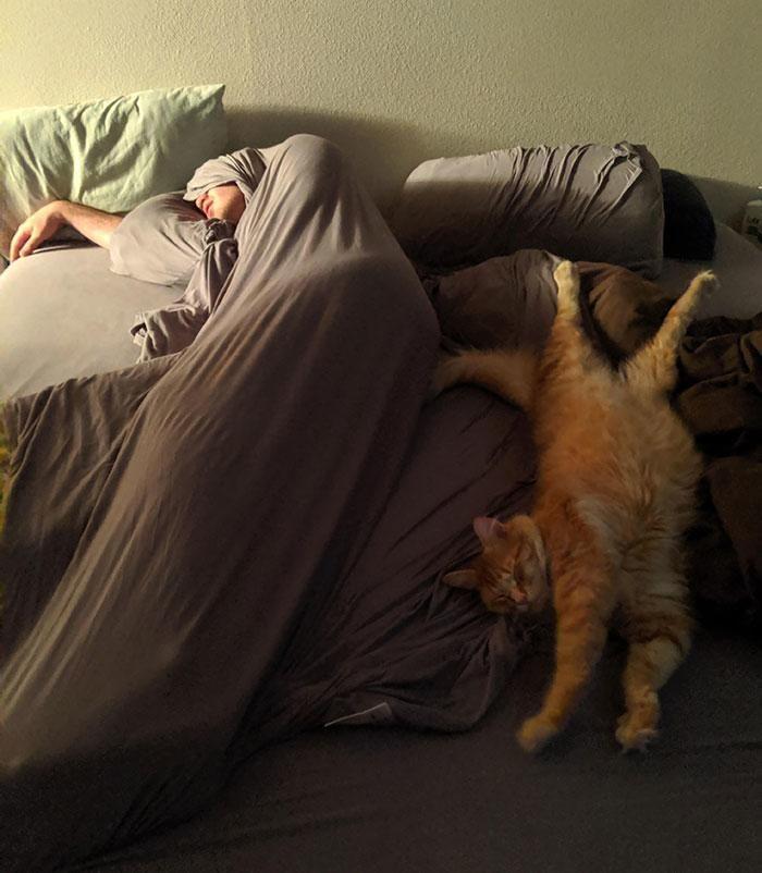 обязанности судового веселые картинки спящих людей них постоянно что-то