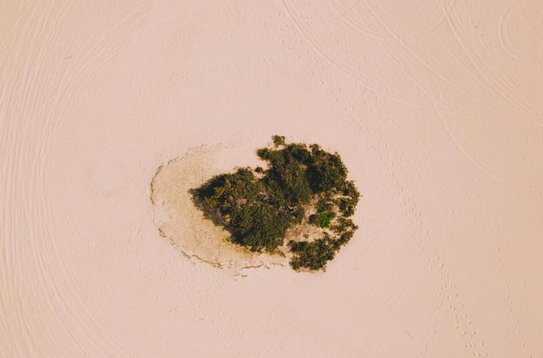 Было — стало: как китайская пустыня превратилась в зелёный рай